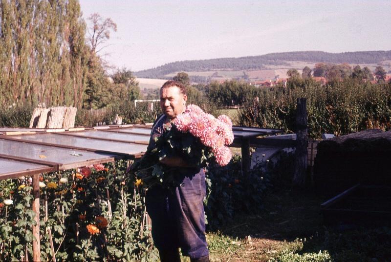 Alfred Möbius